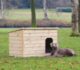 Hondenverblijf Teckel_