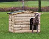 Hondenverblijf Labrador_