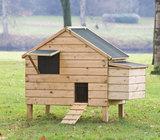 Kippenverblijf Lakenvelder_